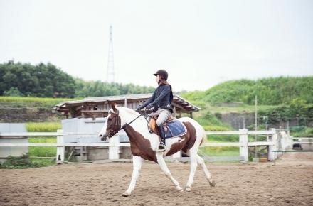 乗馬クラブ FRT