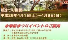 永楽桜まつりイベントのご案内