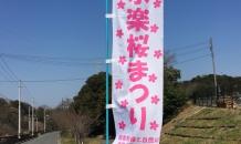🌸永楽桜まつり🌸