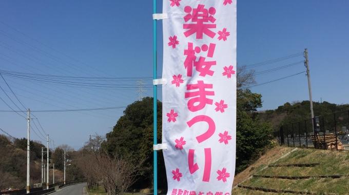 1サムネイル🌸永楽桜まつり🌸